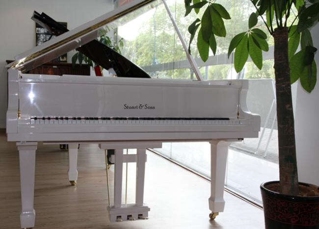 钢琴品牌排行榜:世界上最优秀的钢琴品牌展
