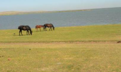 内蒙古几月旅游最好?去内蒙古旅游要带什么?