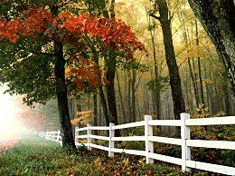 秋天是从立秋开始的吗
