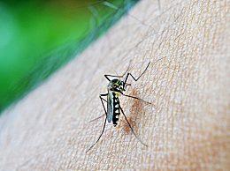 为什么说秋天的蚊子毒又多