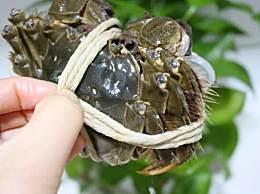 螃蟹怎么清洗最好?清洗螃蟹的正确方法和步骤