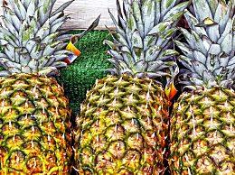 野生菠萝怎么吃最好?野生菠萝作用与功效有哪些