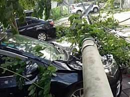 海南突发龙卷风 工地宿舍倒塌8死2伤