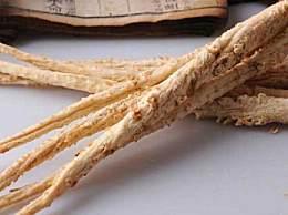 女人吃海参有什么好处?沙参的功效与作用有哪些