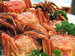 9月份吃公蟹还是母蟹好?公蟹和母蟹你会正确区分吗