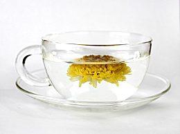 常喝菊花茶有什么好处?菊花的作用有哪些