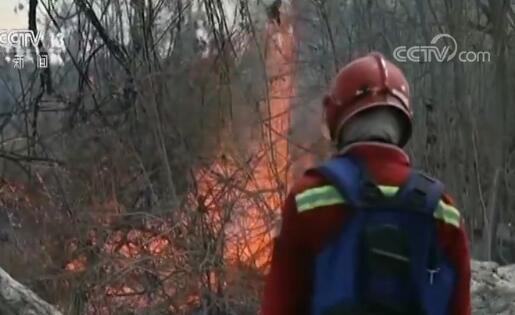 亚马逊森林大火最新消息扑灭了吗 亚马孙雨林火情加剧