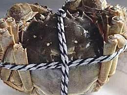大闸蟹为什么要绑起来?螃蟹绑起来原因是什么