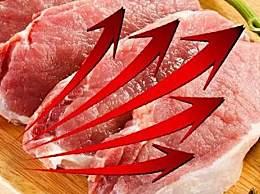 猪肉现地产式调控 猪肉怎么进行地产式调控具体举措