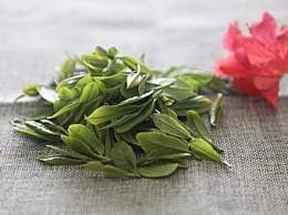 喝绿茶有哪些好处?绿茶抑制高血压的功效