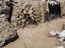 云南泥石流发生的具体地点在哪儿?有无人员伤亡?