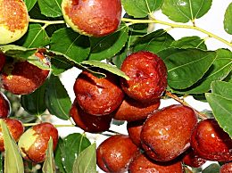 中秋节吃什么水果最应景?中秋节能送梨子吗