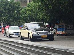 西政慕容云海驾黄牌迈巴赫 黄牌车和蓝牌车有什么区别?
