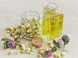 葡萄籽油怎么吃效果好?葡萄籽油的功效与作用有哪些