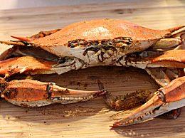 螃蟹蒸多久最好吃?这样吃才更加鲜美可口