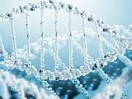 肥胖源自基因变异 肥胖原来是基因惹的祸