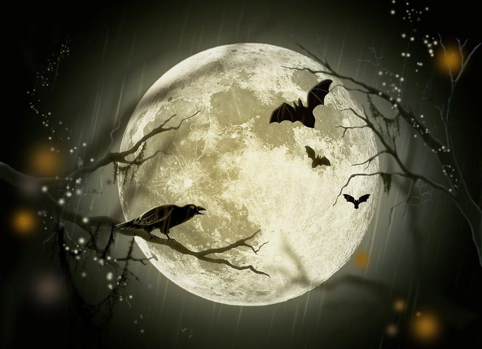 halloween-72939_960_720.jpg