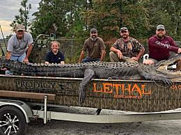美一父女猎杀4.3米鳄鱼 创下新记录