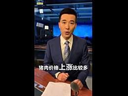 央视主播喊话二师兄别太飘 2019猪肉价格暴涨原因