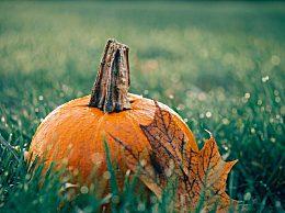 关于秋分的祝福语说说有哪些?秋分好运把你伴祝你幸福到永远