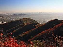 香山红叶什么时候红?今年红叶节什么时候举办?