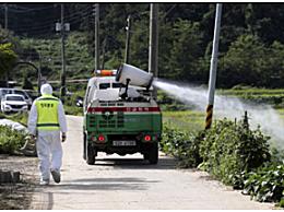韩国首现非洲猪瘟 韩国发现首例非洲猪瘟人类不会感染