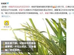 袁隆平获奖当天还在田间 授予国家勋章和荣誉称号