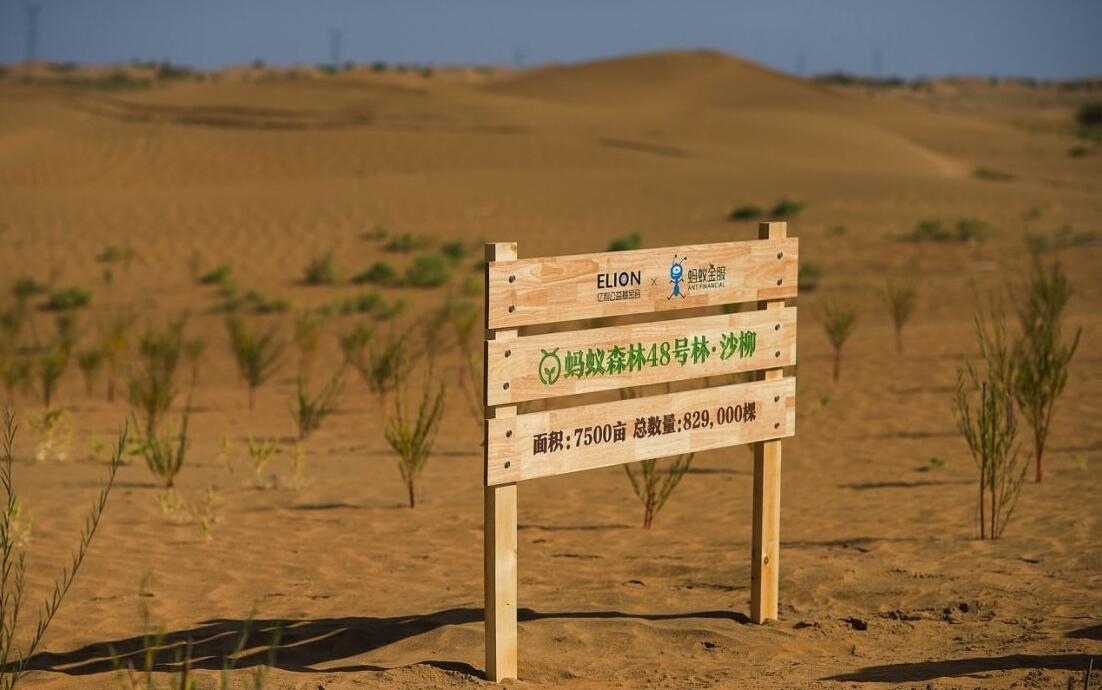 蚂蚁森林地球卫士什么意思?带动5亿人参与低碳生活