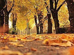 全国入秋进程图如何界定入秋?入秋后怎么养生?