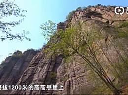 太行山郭亮村和新乡郭亮村有何区别?