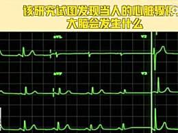 研究称人能感知自己已死亡 心脏停跳大脑仍清醒