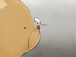 家里有老鼠怎么办?怎么消灭家中的老鼠