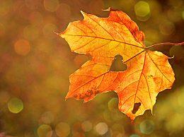 秋分如何养生?秋分养生注意什么