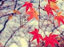今年秋分是几月几号