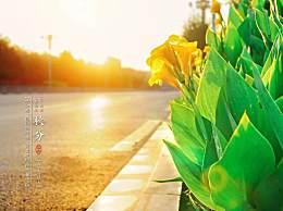 秋分是什么意思几月几号?秋分以后天气还会热吗