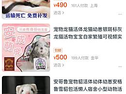 法规禁止活体动物邮寄 卖家是怎么把活体动物邮寄出去的