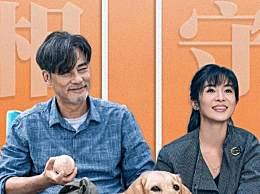 小Q票房破亿 小Q讲的是什么品种的狗