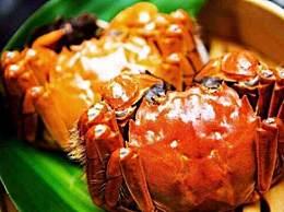蒸螃蟹蒸几分钟?做好后的大闸蟹要怎么吃