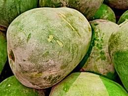 吃冬瓜子有什么好处?冬瓜子的功效与作用