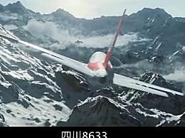 四川8633改编电影叫什么 四川8633如何完整迫降视频过程