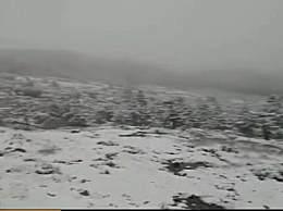 轿子雪山在哪儿?轿子雪山海拔多高?