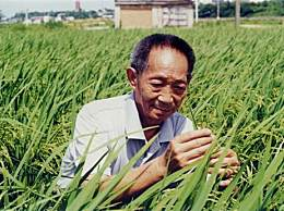 袁隆平回去就要下田!年届九旬仍心系超水稻