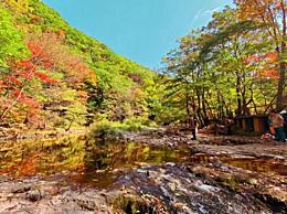 景区为枫树投保!保额1千万在关门山签约举行