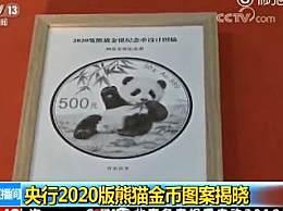 央行2020版熊猫金币 小熊猫吃竹子萌翻天