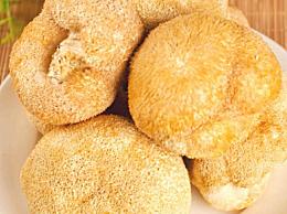 野生猴头菇多少钱一斤 猴头菇的价格多少 猴头菇最新最全价格走势
