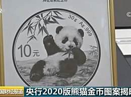2020版熊猫金币 由母子熊猫变为长大的儿童小熊猫