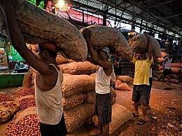 洋葱价格飙升不断 印度人连洋葱都吃不起了