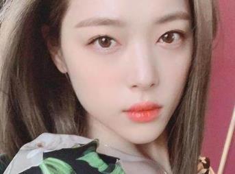 韩网民净化雪莉关键词 崔雪莉死后公开日记
