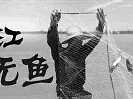 """长江已到""""无鱼""""等级"""