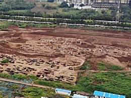 西安工地挖出古墓群